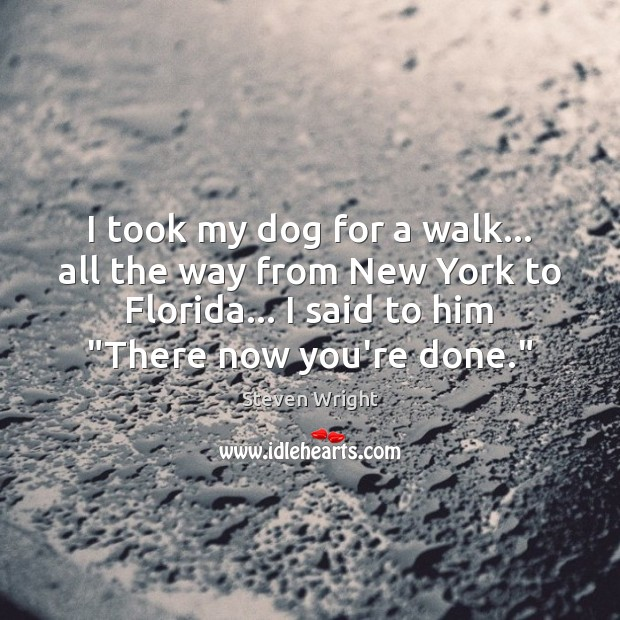 I took my dog for a walk… all the way from New Image