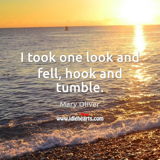 I took one look and fell, hook and tumble. Mary Oliver Picture Quote