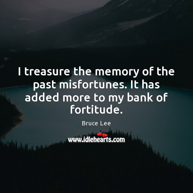 I treasure the memory of the past misfortunes. It has added more to my bank of fortitude. Image