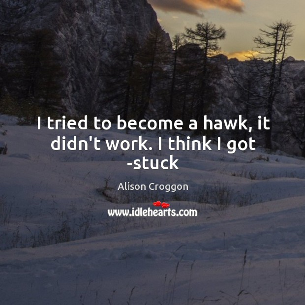 I tried to become a hawk, it didn't work. I think I got -stuck Image