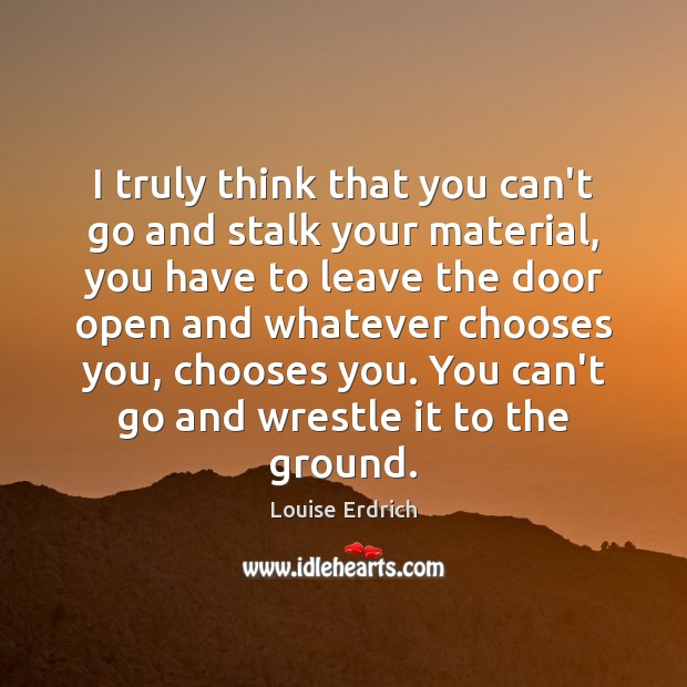 I truly think that you can't go and stalk your material, you Louise Erdrich Picture Quote