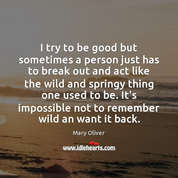 I try to be good but sometimes a person just has to Mary Oliver Picture Quote