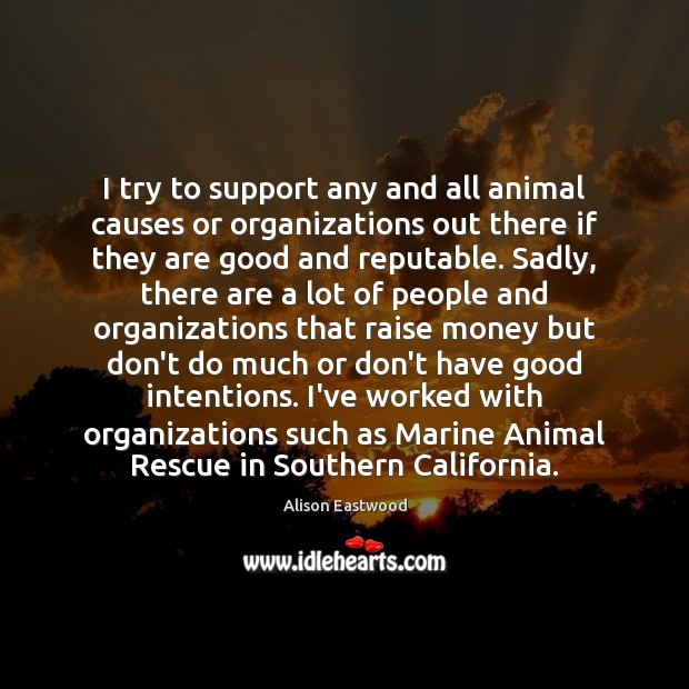 Image, I try to support any and all animal causes or organizations out