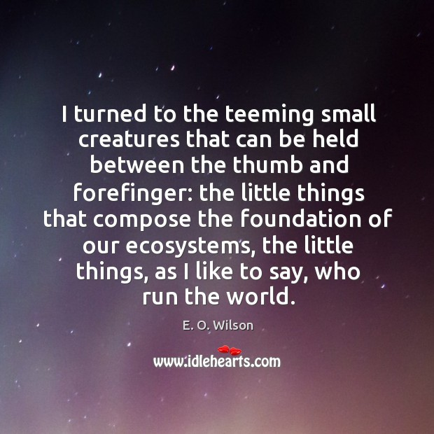 Image, I turned to the teeming small creatures that can be held between