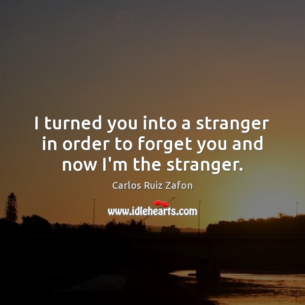 Image, I turned you into a stranger in order to forget you and now I'm the stranger.