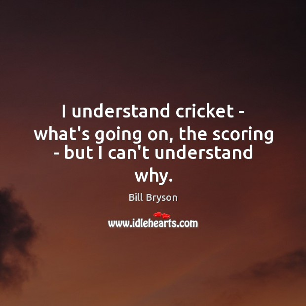 I understand cricket – what's going on, the scoring – but I can't understand why. Image