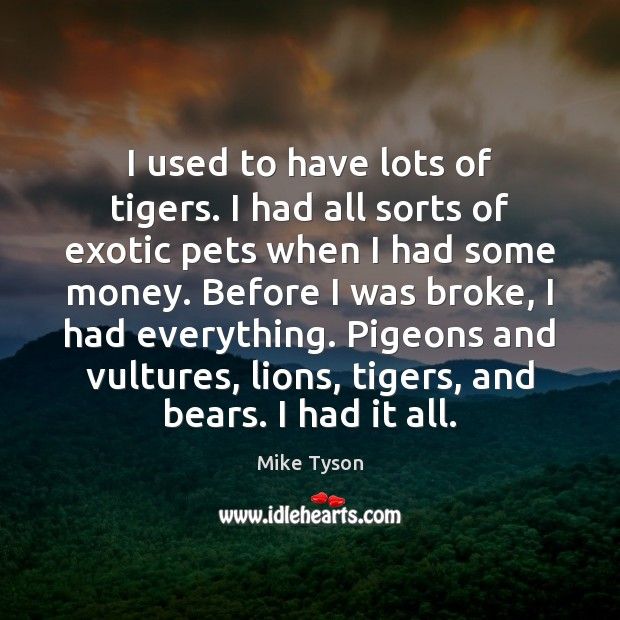 Image, I used to have lots of tigers. I had all sorts of