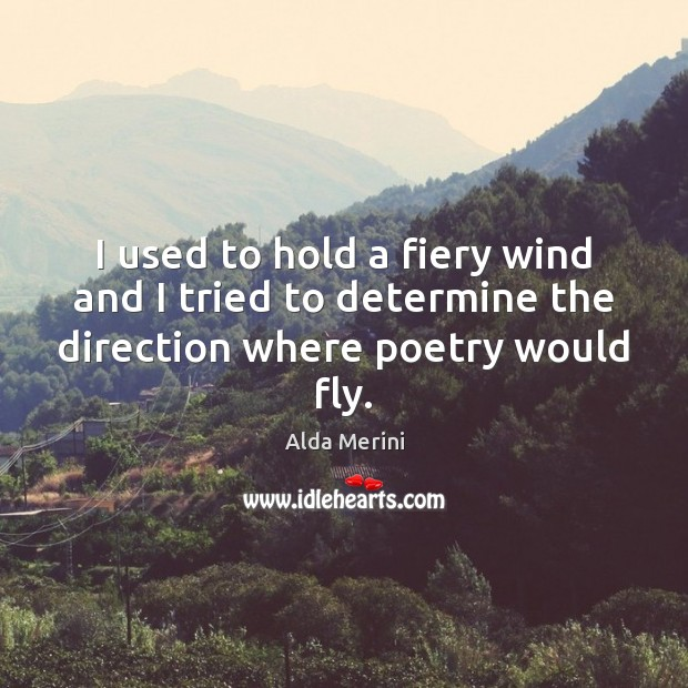 Image, I used to hold a fiery wind and I tried to determine the direction where poetry would fly.