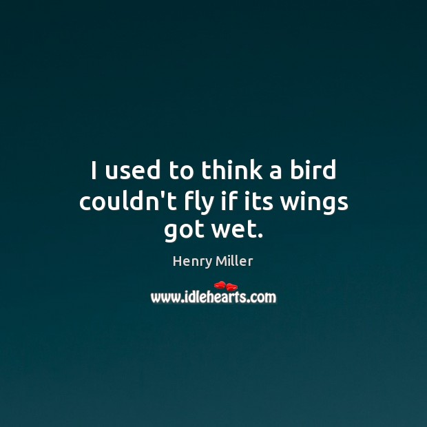 I used to think a bird couldn't fly if its wings got wet. Image
