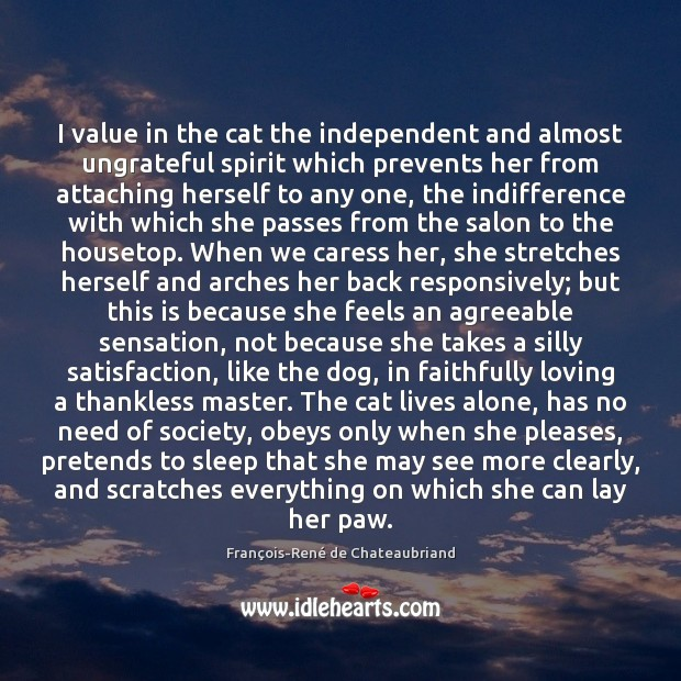 Image, I value in the cat the independent and almost ungrateful spirit which