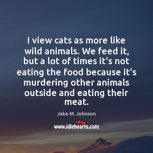 Image, I view cats as more like wild animals. We feed it, but