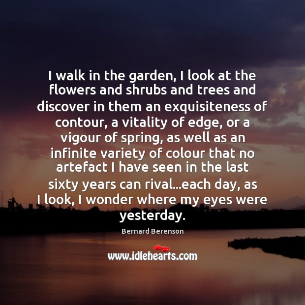 Image, I walk in the garden, I look at the flowers and shrubs