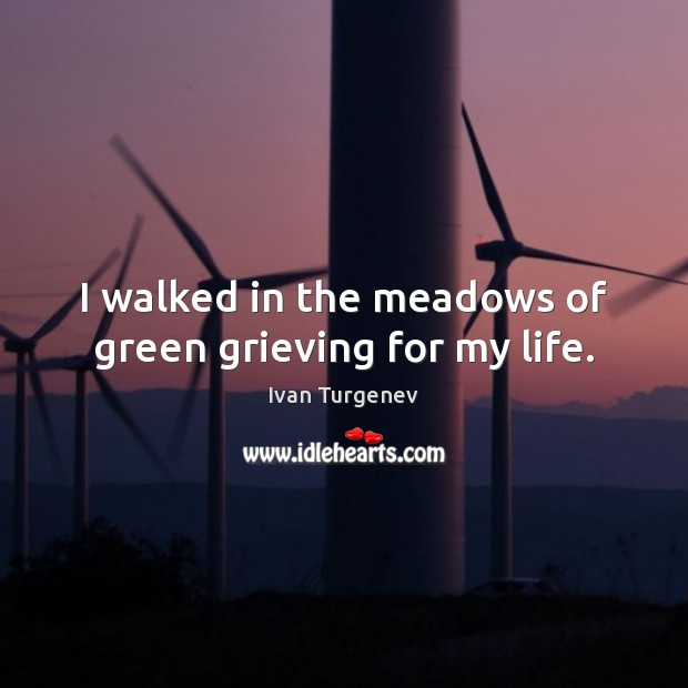 I walked in the meadows of green grieving for my life. Image
