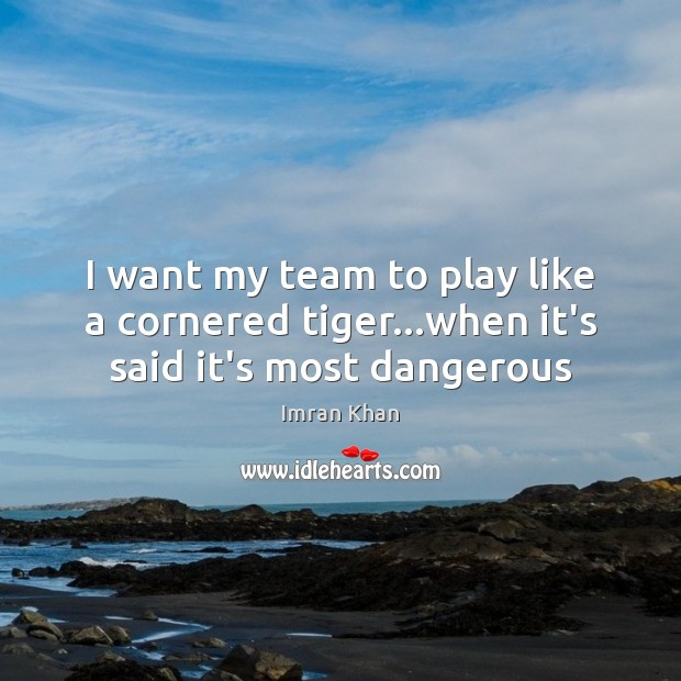 I want my team to play like a cornered tiger…when it's said it's most dangerous Imran Khan Picture Quote
