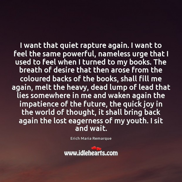 I want that quiet rapture again. I want to feel the same Erich Maria Remarque Picture Quote