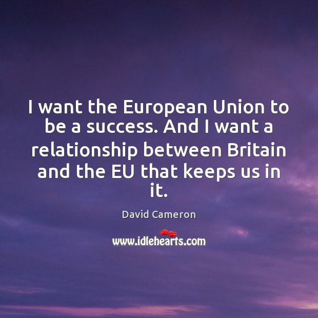 I want the European Union to be a success. And I want David Cameron Picture Quote