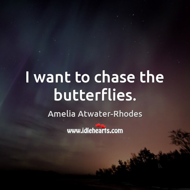 Image, I want to chase the butterflies.