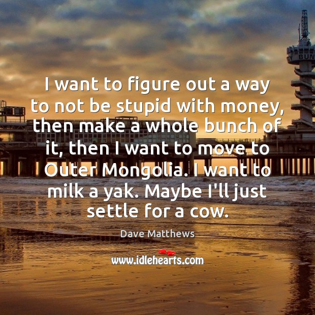 I want to figure out a way to not be stupid with Dave Matthews Picture Quote