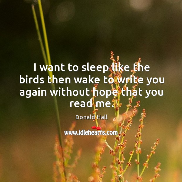 Image, I want to sleep like the birds then wake to write you again without hope that you read me.