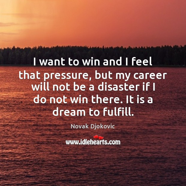 I want to win and I feel that pressure, but my career Image