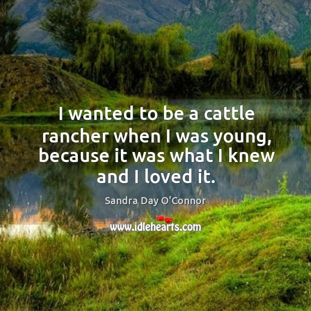 Image, I wanted to be a cattle rancher when I was young, because it was what I knew and I loved it.