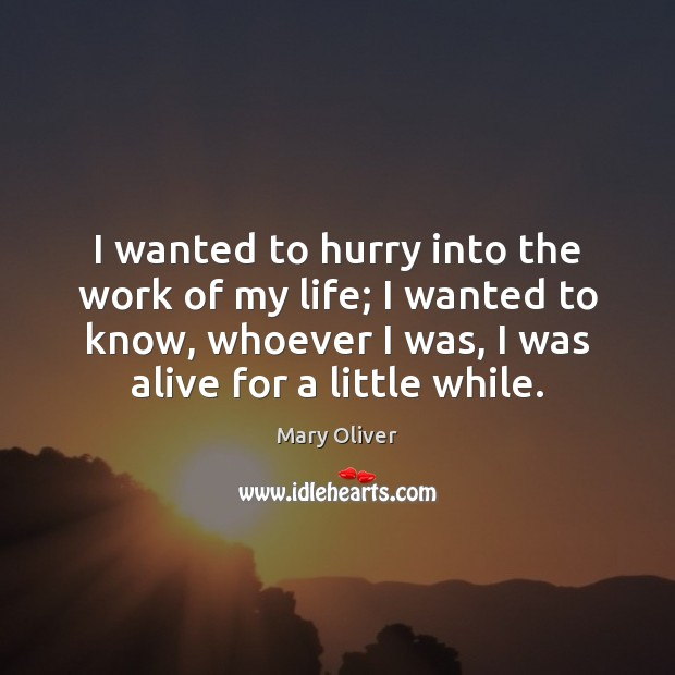 I wanted to hurry into the work of my life; I wanted Mary Oliver Picture Quote