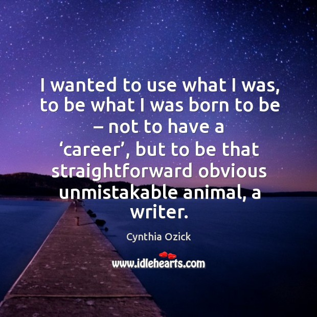 I wanted to use what I was, to be what I was born to be – not to have a 'career' Image