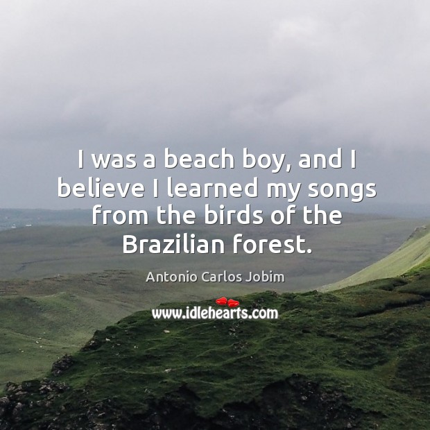 Image, I was a beach boy, and I believe I learned my songs