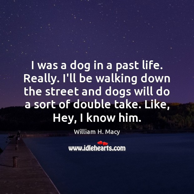 Image, I was a dog in a past life. Really. I'll be walking