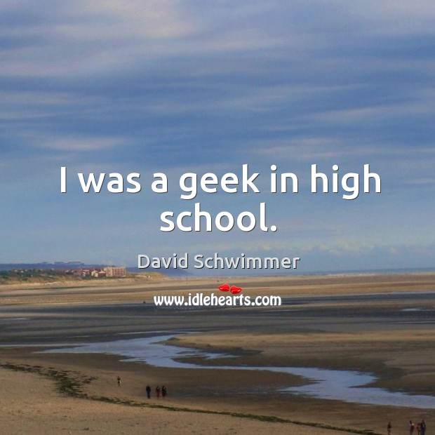 I was a geek in high school. David Schwimmer Picture Quote