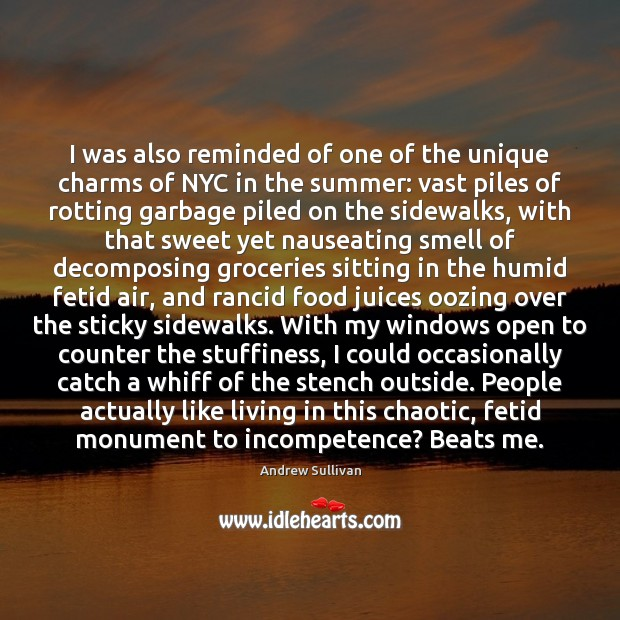 I was also reminded of one of the unique charms of NYC Andrew Sullivan Picture Quote