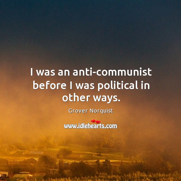 I was an anti-communist before I was political in other ways. Grover Norquist Picture Quote