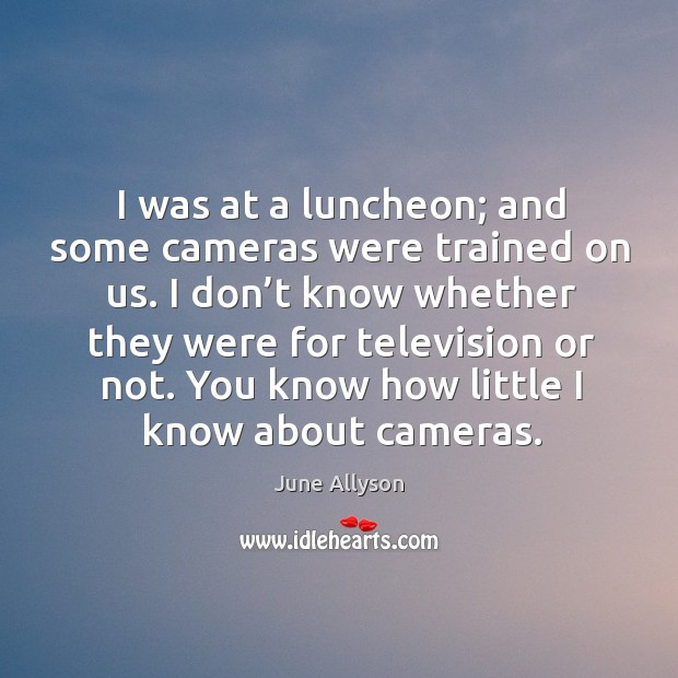 June Allyson Picture Quote image saying: I was at a luncheon; and some cameras were trained on us.