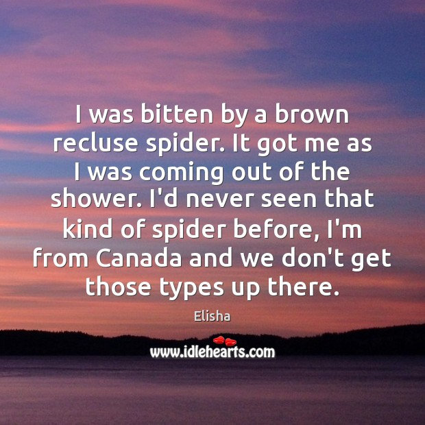 Image, I was bitten by a brown recluse spider. It got me as