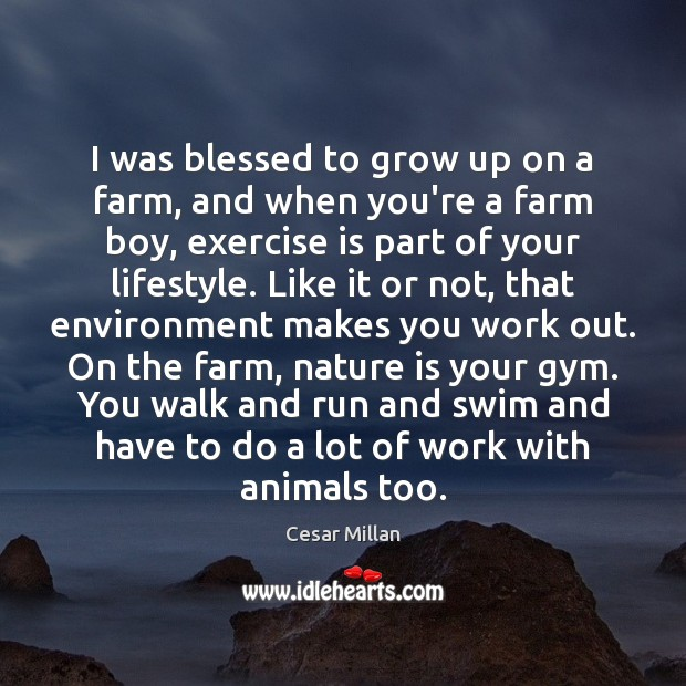 Picture Quote by Cesar Millan
