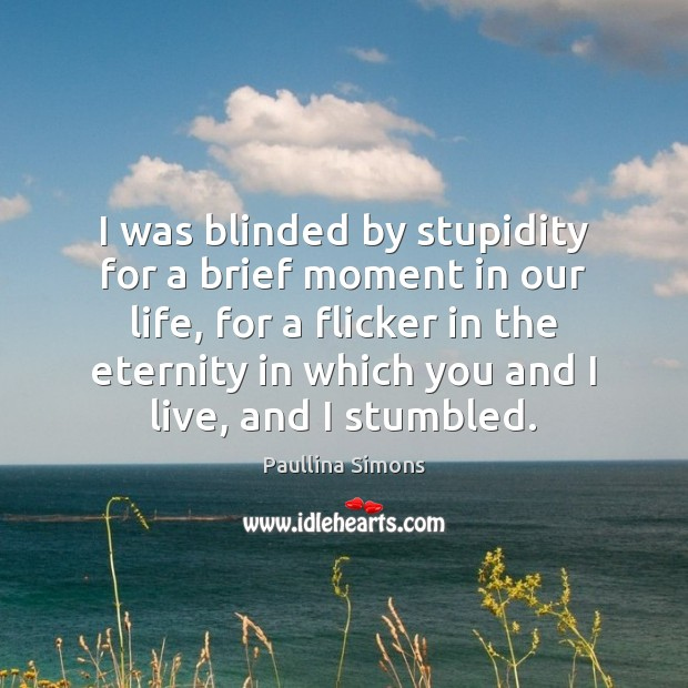 I was blinded by stupidity for a brief moment in our life, Paullina Simons Picture Quote