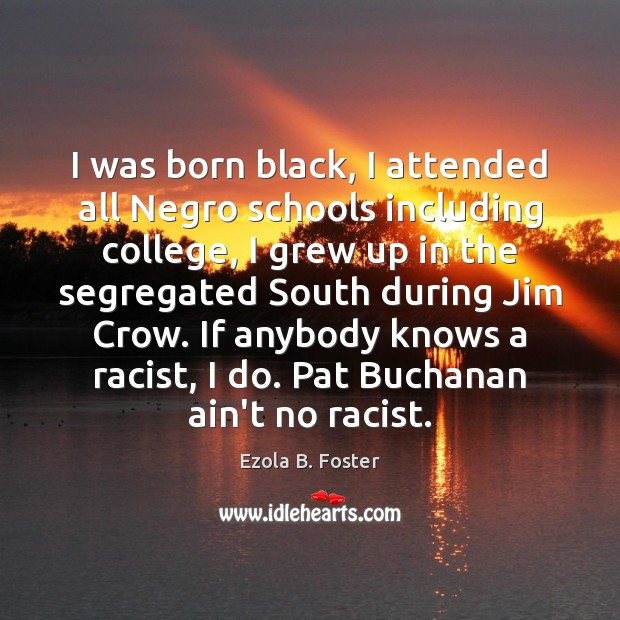 I was born black, I attended all Negro schools including college, I Image