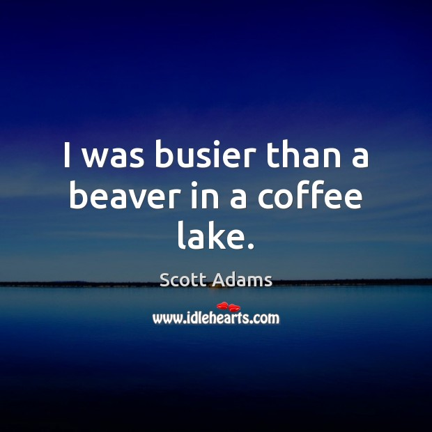 I was busier than a beaver in a coffee lake. Image