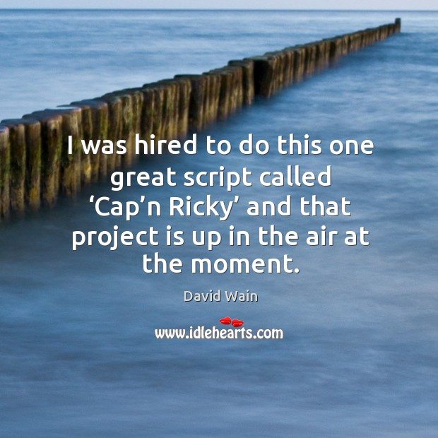 I was hired to do this one great script called 'cap'n ricky' and that David Wain Picture Quote