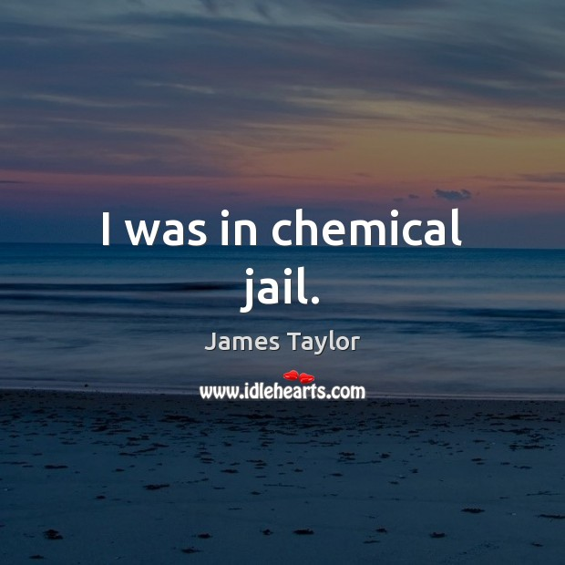 I was in chemical jail. James Taylor Picture Quote