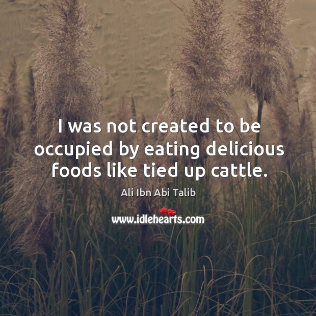 I was not created to be occupied by eating delicious foods like tied up cattle. Ali Ibn Abi Talib Picture Quote