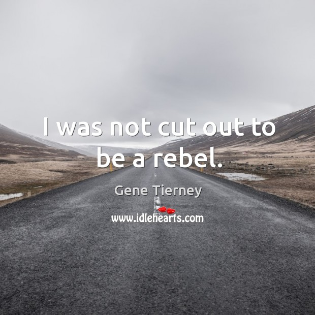 I was not cut out to be a rebel. Image
