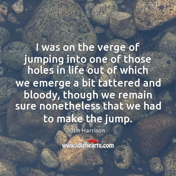 I was on the verge of jumping into one of those holes Jim Harrison Picture Quote