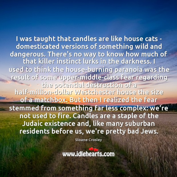 Image, I was taught that candles are like house cats – domesticated versions