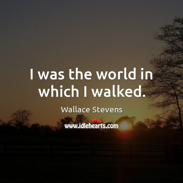 Image, I was the world in which I walked.