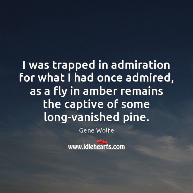 I was trapped in admiration for what I had once admired, as Image