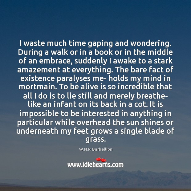 I waste much time gaping and wondering. During a walk or in W.N.P. Barbellion Picture Quote