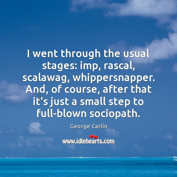 I went through the usual stages: imp, rascal, scalawag, whippersnapper. And, of Image