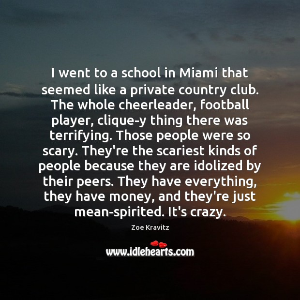 I went to a school in Miami that seemed like a private Zoe Kravitz Picture Quote