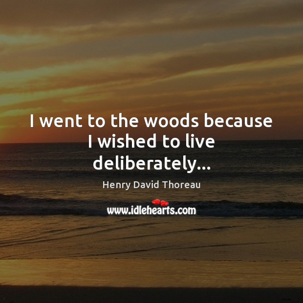 Image, I went to the woods because I wished to live deliberately…
